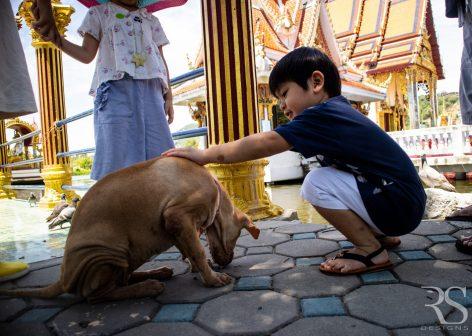 thailand travel video videografie fotografie - RSDesigns